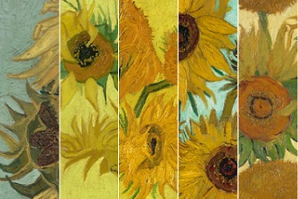 Focus on Facebook #SunflowersLive: reuniting van Gogh's five Sunflowers on social media